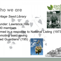 Heritage Seed Library - collecting vegetable cultivars in the UK