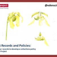Plant Records and the Collections Policy at Eden Project