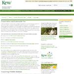 kew-abs-icon