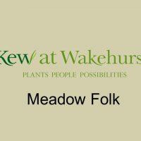 Wakehurst Meadow Folk
