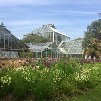 Plant records training day 2018 at Cambridge University Botanic Garden