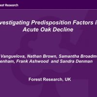Investigating predisposition Factors in Acute Oak Decline