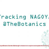 Tracking NAGOYA at the RBGE