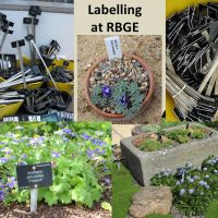New Botanical Plant Labels