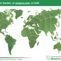Botanic Garden or Amazon.com, or both
