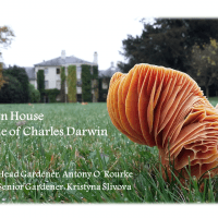 History of science and research in the garden at Down House
