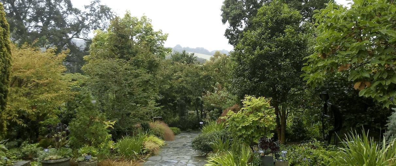 Arboreta and Woodlands: RHS Garden Rosemoor