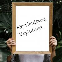 Horticulture Explained:  Interpretation of horticultural practicein UK publicgardens