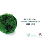 Presentation on UN Decade on Biodiversity (pdf)