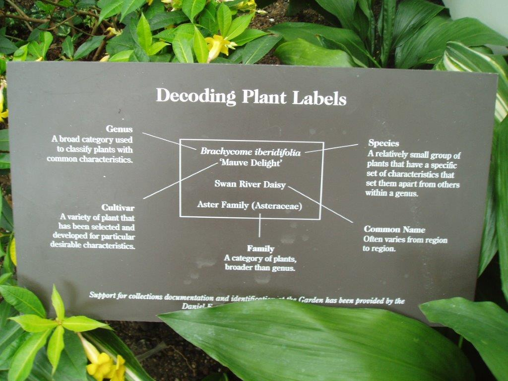 It's just a graphic of Current Botanical Garden Plant Labels