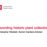 Recording historic plant collections