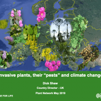 Invasive plants, their 'pests' & climate change